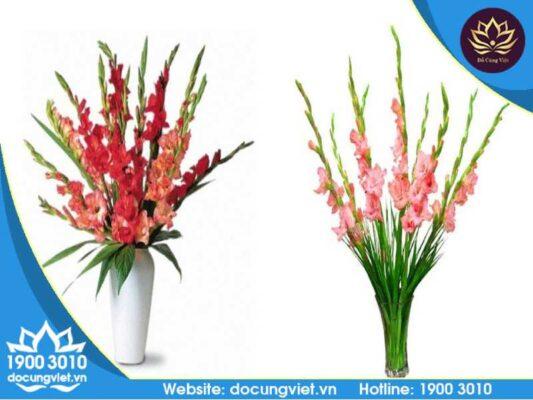 Hoa lay ơn là loài hoa dùng để cúng bàn thờ